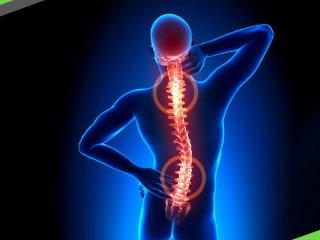 保持七大正確習慣避免S形脊椎找上門