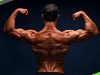 六個動作打造鐵背 下背痛GET OUT