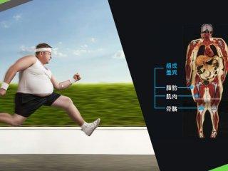對抗少肌型肥胖 黃金三招打造精實身材